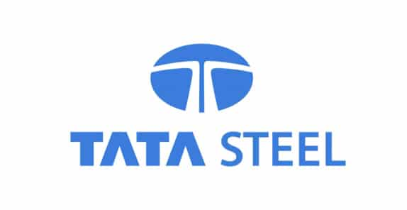 Tata Steel Logo Margin